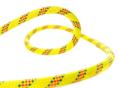 Σχοινί Αναρρίχησης Beal Antidote 10,2 mm κίτρινο - ανά μέτρο
