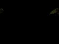 Κουνουπιέρα 360° Ticket to the moon Black