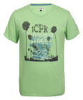 T-shirt Icepeak Marcel Men Leaf Green